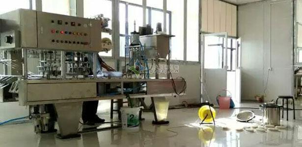 碗装猪皮冻灌装封口机-攀枝花热销-自动灌装封口机