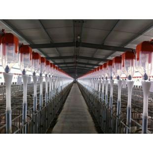 辽宁猪自动料线厂家直营/开元畜牧质量三包价格从优