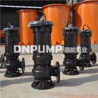 天津生产排污泵的厂家