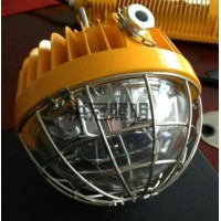 BC9302 圆形LED防爆泛光灯40W