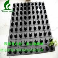 郑州20高蓄排水板15车库阻根排水板(定制型号)