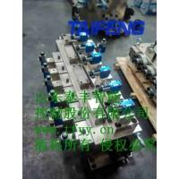 YN32-500HXCV阀组泰丰厂家供应