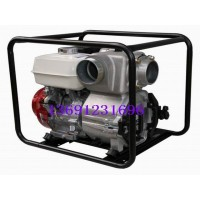 原装进口污水泵WT40HX